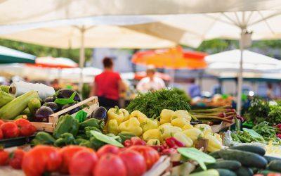 Registration Opens for Wellington's Main Street Market